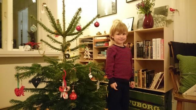 Vores lille juletræ og en stolt Magne